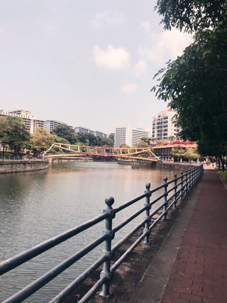Less Screen Time, More Green Time - A long bridge over a body of water - Cavenagh Bridge